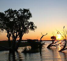 Chobe River - Chobe National Park, Botswana, July 2008 by Sarah Doornbusch