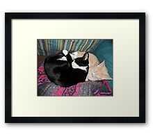 Snoozing Kittens Framed Print