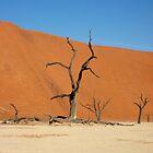 Deadvlei, Namib Desert, Namibia by Dan Broome