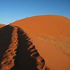 Dune 45 by Dan Broome