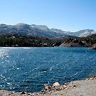 elery lake by Nicole M. Spaulding