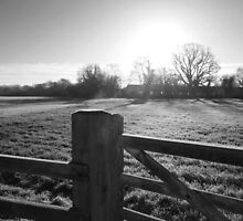 Frost post by Phototaffic