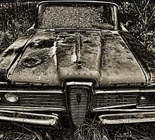 Edsel by Jason  Burris