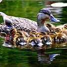 Mother's Love by Adrienne Berner