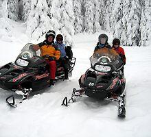 Snowmobiling by Cheryl Parkes