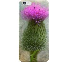 Scotch Thistle iPhone Case/Skin