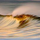 Golden Wave Crest by David Orias