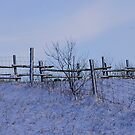Fence after a storm.... by Larry Llewellyn