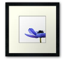 Blue Tutu Framed Print