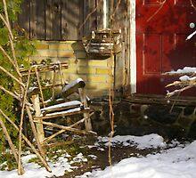 A Stoop in Winter...... by Larry Llewellyn