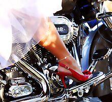 Bride's Ride by Tracy Deptuck