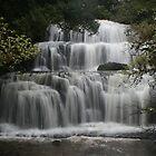 Purakaunui Falls, Catlins - New Zealand by Nicola Barnard