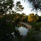 river with sunset - rio con puesta del sol by Bernhard Matejka