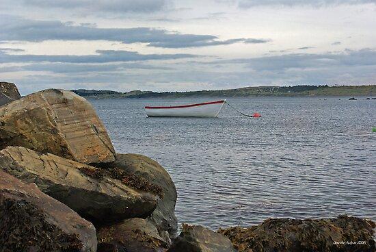 Lone Boat by Jennifer Finn