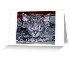 Wide Eyed Greeting Card
