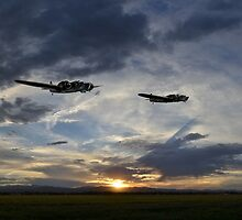 Blenheim Sortie  by J Biggadike