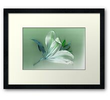 In tones of green Framed Print