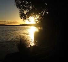 Sunset at Myall Lakes by Cheryl Parkes