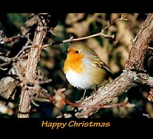 Happy Christmas  by Linda More