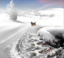 White Plains by Igor Zenin