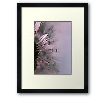 Untouched Beauty Framed Print