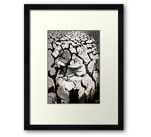 Life Passage Framed Print