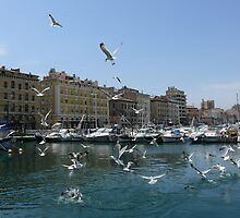 bunder of Marseille by KaterinaSam