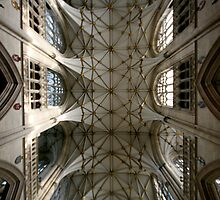 York Minster Roof by Stormswept