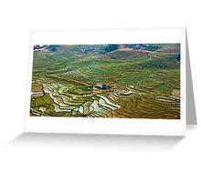 Rice Fields and Farms near Topas, Northeastern Vietnam Greeting Card