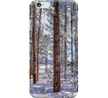Gila National Forest New Mexico iPhone Case/Skin