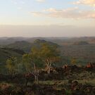 View towards the Kimberleys - Turkey Creek by Bilgolaj