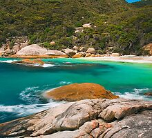 Southern Paradise by aabzimaging