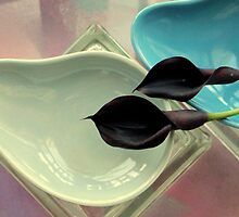 Black Callas, Over And Underlap by Michael May