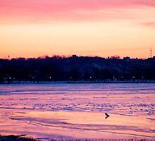 Cold Potomac Sunrise by Jay-J
