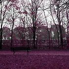 Alone with the lonely bench by monaiman
