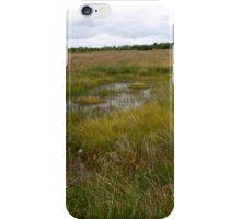 Marsh at Culloden iPhone Case/Skin