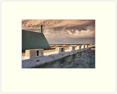 Newcastle Ocean Baths by Brad McEvoy