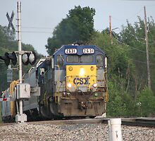CSX TRAIN by Paul Smileatu