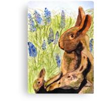 Terra Cotta Bunny Family Canvas Print