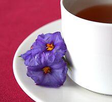 Tea Time by Selina Tour