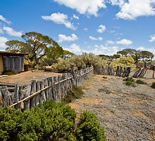 Koonalda Sheep Yard - Nullarbor Plain, South Australia by Stephen Permezel