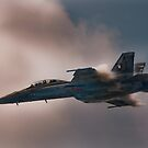 F/A-18 Hornet by Andy Mueller
