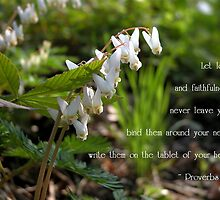 Dutchman's Breeches by mnkreations
