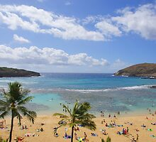 Hanauma Bay Watch by kevin smith  skystudiohawaii