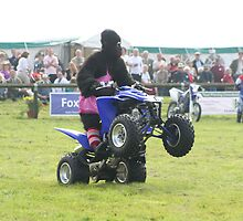 Gorilla Wheelie by scooby29