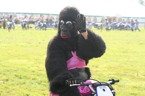 funny gorilla woman in bikini