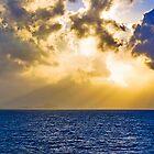 Rays by Jeff Harris