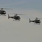 Choppers by Noel Elliot