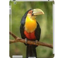 Toucan in Tree, Iguazu Falls, Brazil iPad Case/Skin