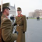Hungarian Guardsman outside Budapest Parliament Building by Keith Larby